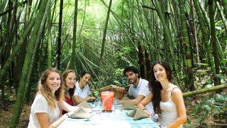 Déjeuner dans une forêt de Guaduas