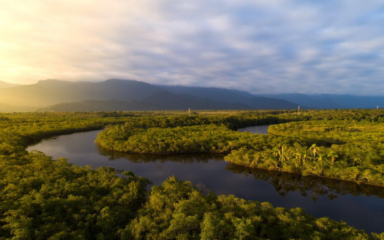 Fleuve Amazone en Amazonie