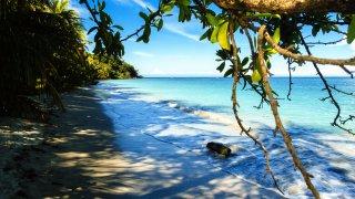Le parc national de Cahuita au Costa Rica