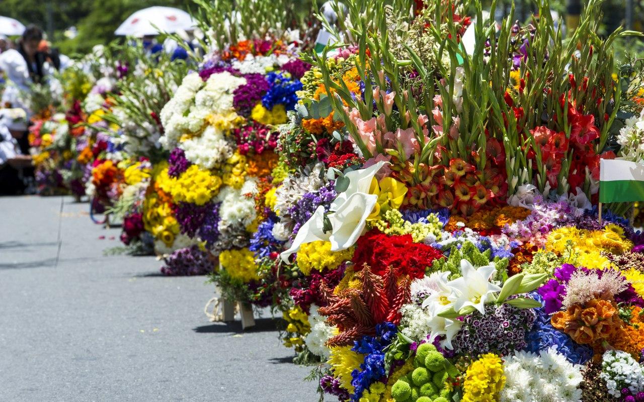 Défilé de Silleteros pendant la Fête des Fleurs