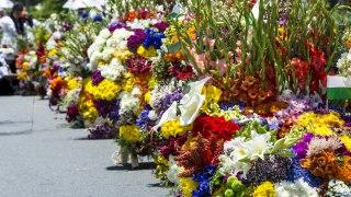 La fête des fleurs à Medellin
