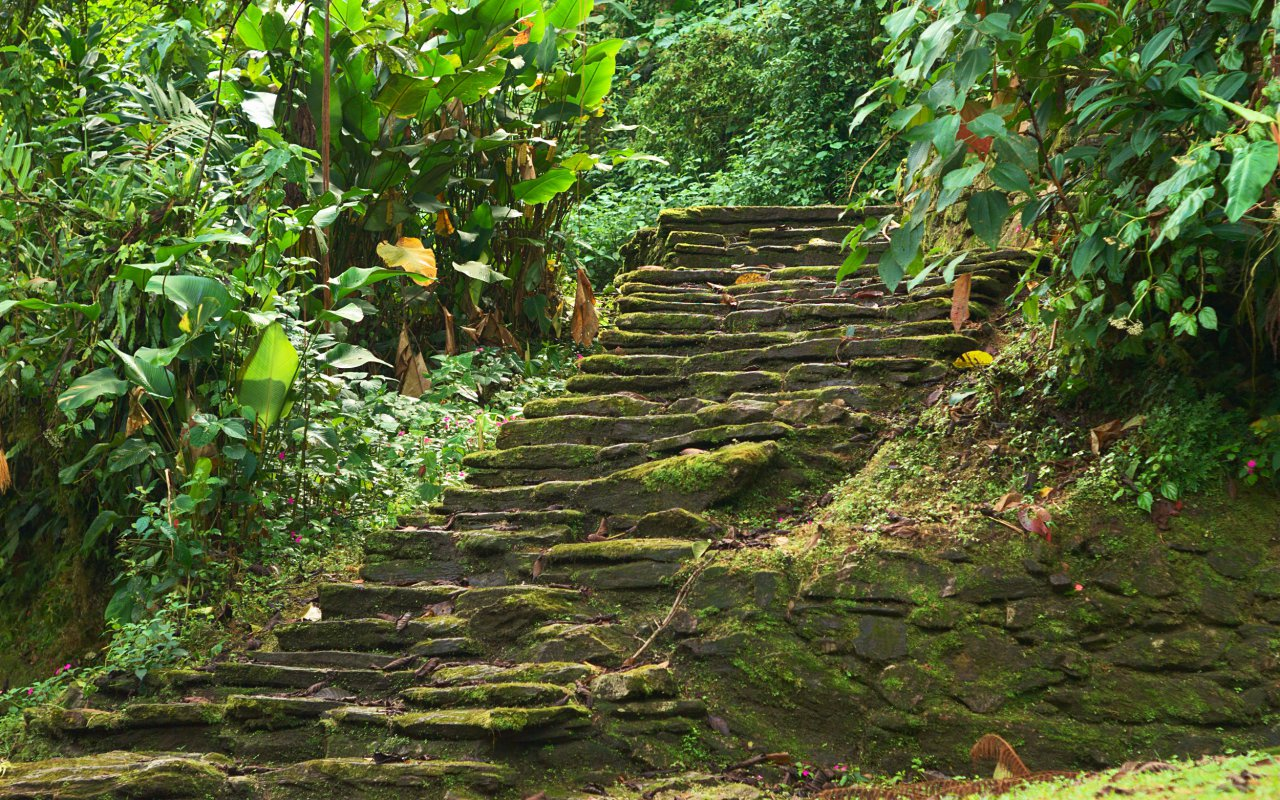 Les marches de la cité perdue en Colombie