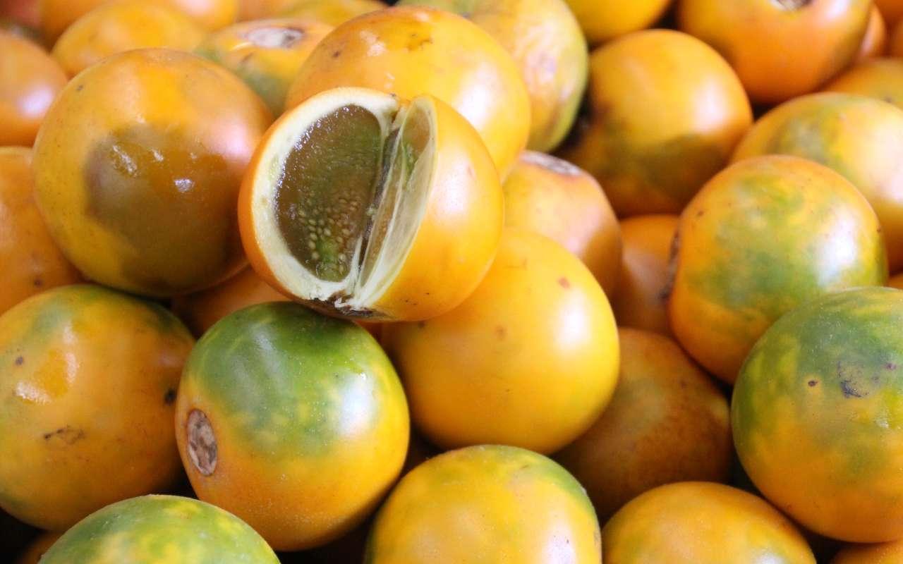 Les fruits exotiques de Colombie