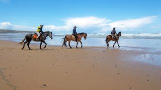 Découvrir la Colombie à cheval
