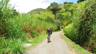 Manizales dans la région du café en Colombie