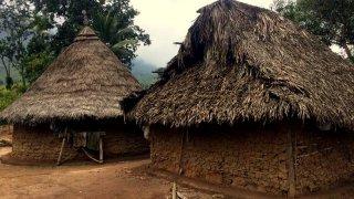un campement Koguis en Colombie