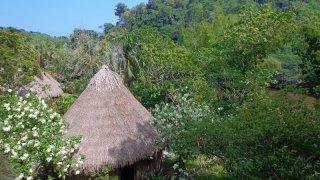 Le site de Tayronaka au bord du Rio Don Diego