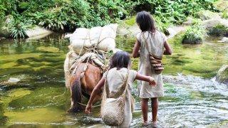 Enfants de la communauté koguis en Colombie