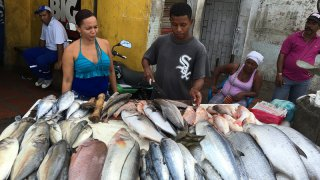 un marché de poissons à Santa Marta en Colombie