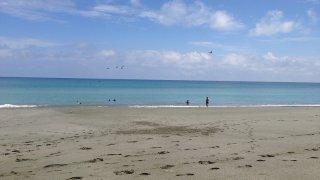 Les plages de Gorgona