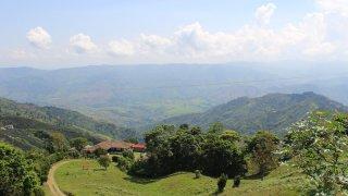 Une finca dans la région du café en Colombie