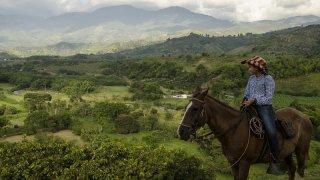 Faire du cheval dans la région d'Arménia en Colombie