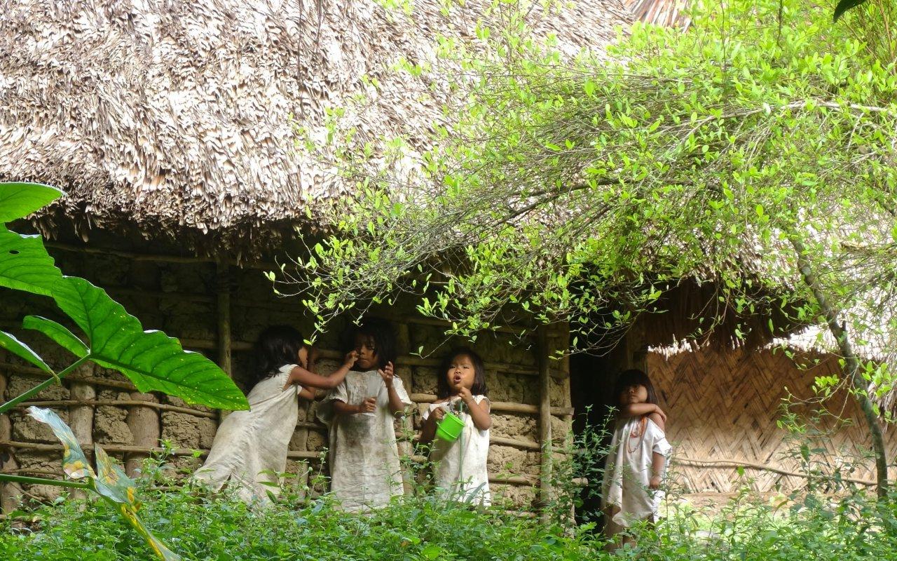 Village kogi de la Sierra Nevada de Santa Marta en Colombie
