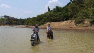 Balade à cheval dans les Llanos