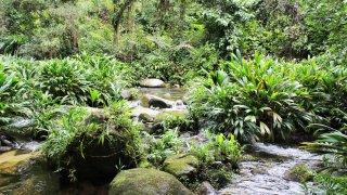 Les cascades et rivieres de la Sierra Nevada de Santa Marta