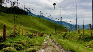 La Colombie élue meilleure destination pour l'année 2020