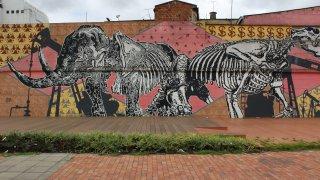 Street art à Bogota en Colombie