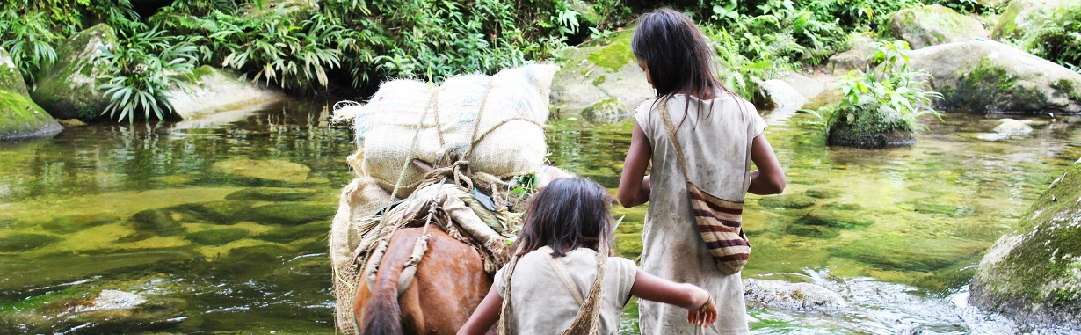 Rencontre avec les peuples indigènes de Colombie