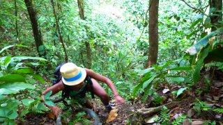 Les randonnées dans la jungle du Darien