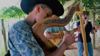 harpe-joropo-llanos