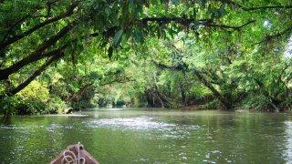 Navigation dans les eaux du Choco