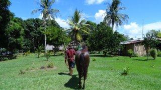 Voyage à la découverte de l'Histoire de la Colombie