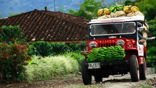 Les jeep Willys de la région du café en Colombie